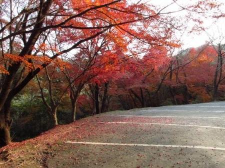 清水山 049