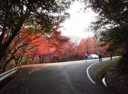 清水山 047