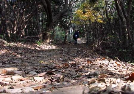 清水山 067