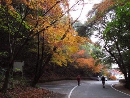 清水山 096