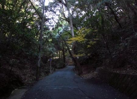 清水山 006