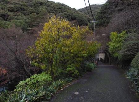 清水山 122