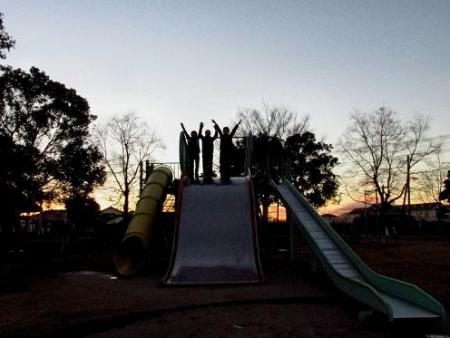 ムクドリ夕陽と公園 112