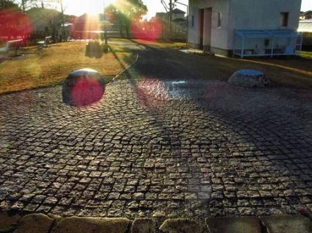 ムクドリ夕陽と公園 039