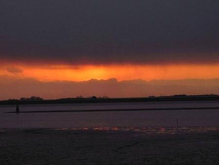 ロウバイと多良の夕陽 054