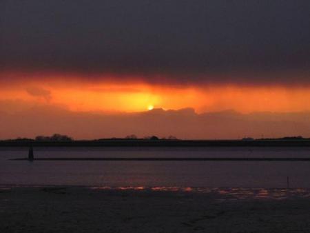 ロウバイと多良の夕陽 051
