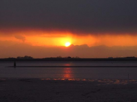 ロウバイと多良の夕陽 049