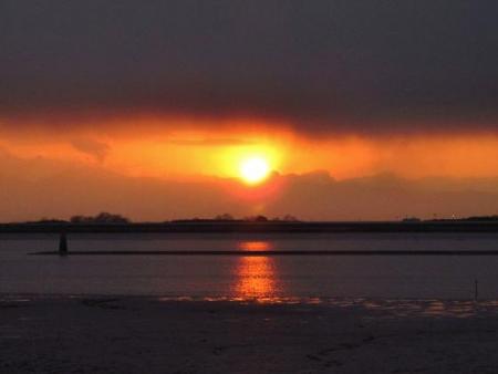 ロウバイと多良の夕陽 047