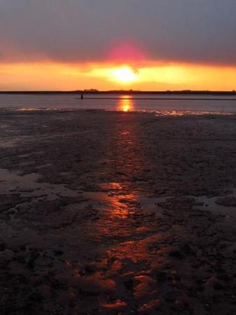ロウバイと多良の夕陽 036