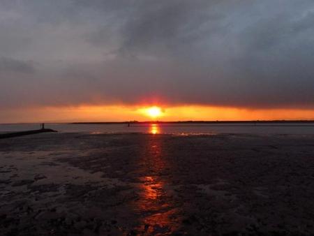 ロウバイと多良の夕陽 034