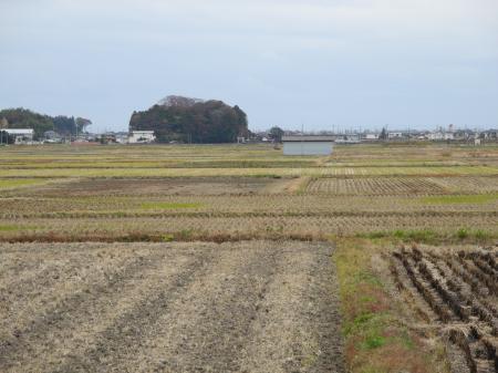 神谷耕作地