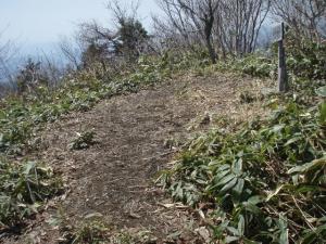 20110414富栄山大空山6