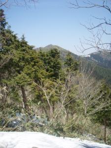 20110414富栄山大空山1