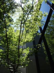 20110717岡山県立博物館5