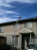 屋根調査20111108