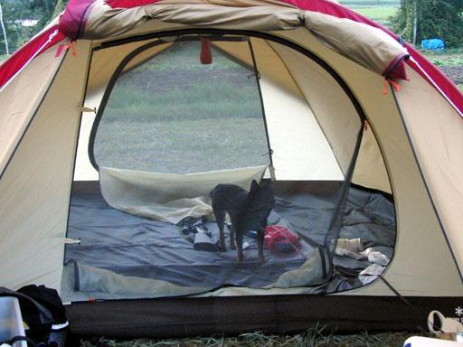 はじめての一泊キャンプ