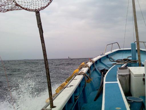 内房船釣り