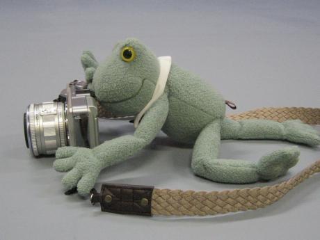 カメラストラップなカエル君