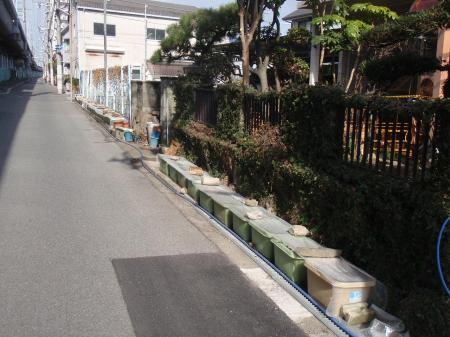 縺翫▲縺阪¥縺ェ縺ゑス槭l笙ェ+008_convert_20110304100329