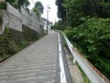 CIMG5423.jpg