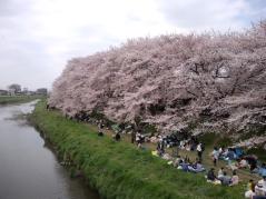 yukas201104102.jpg