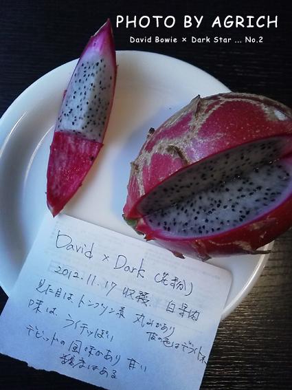 David × Dark No.2-2