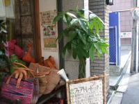 2011_042601・4・26 緑植0001