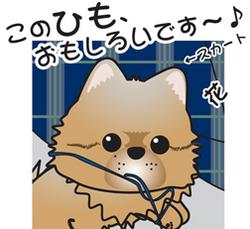 __tn_hanahimo.jpg