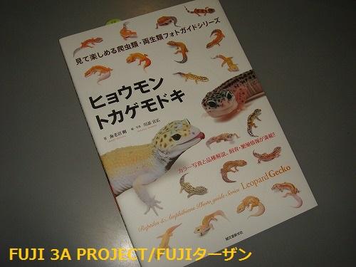 022_20130728105424.jpg