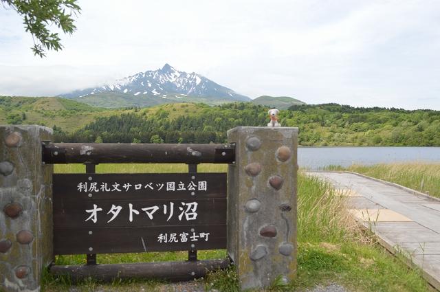 北海道(1) (252)