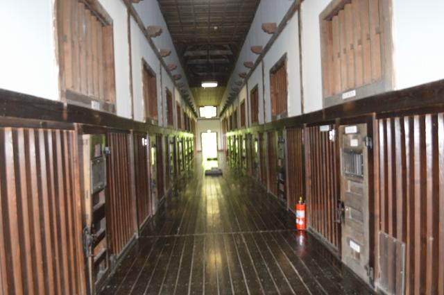 北海道(1) (907)