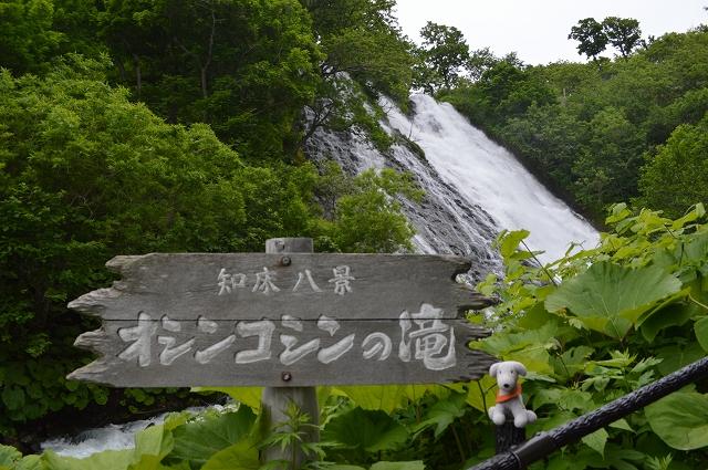 北海道(1) (972)