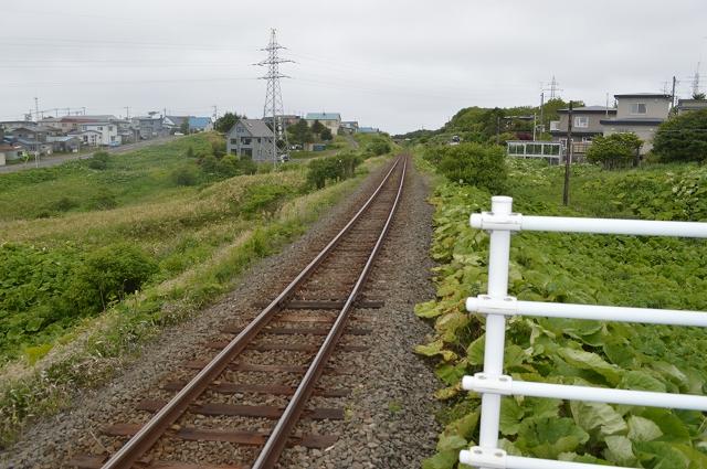 ホッカイドウ(1) (184)