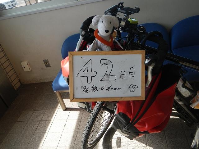 DSCN3512a.jpg