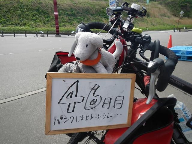 DSCN3857.jpg