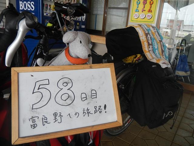 DSCN5040.jpg