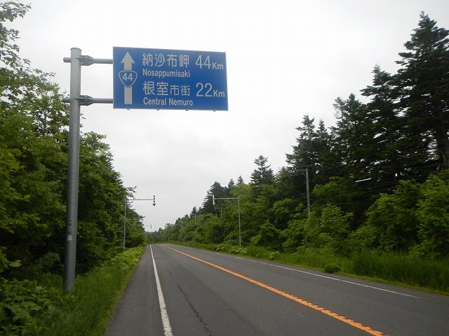 DSCN8441.jpg