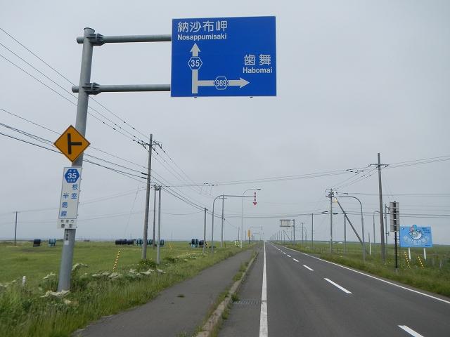 DSCN8530.jpg