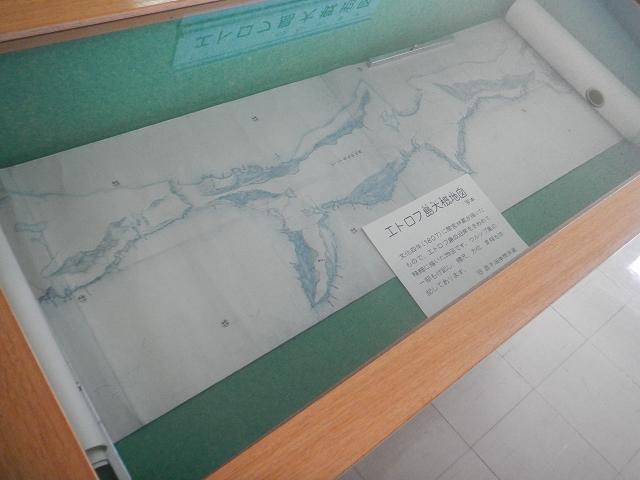 DSCN8687.jpg