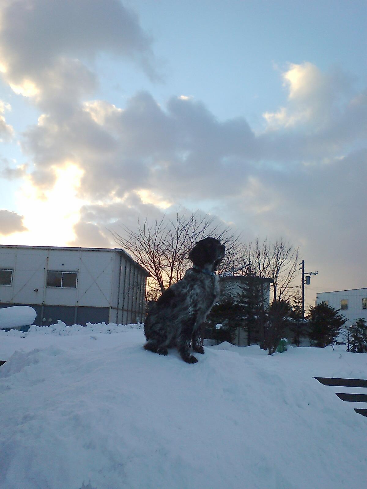 雪のラン2