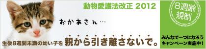8syu_b_main_M3.jpg
