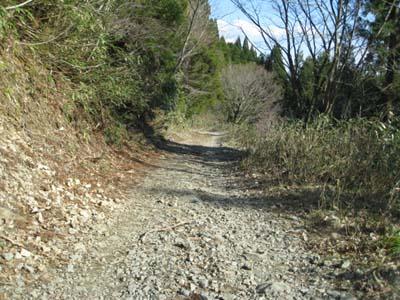 瀞川氷ノ山林道10