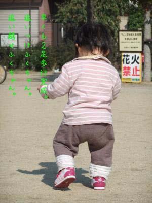 2010_11_13_08のコピー