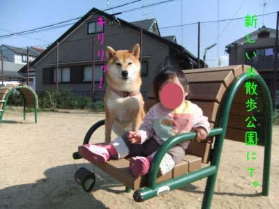 2010_11_13_07のコピー