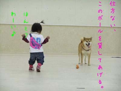 2010_11_28_04のコピー