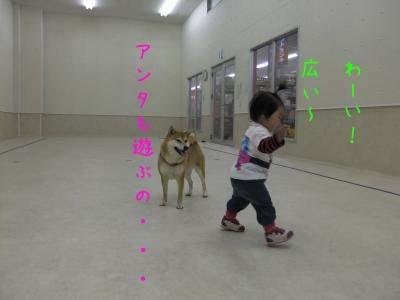 2010_11_28_03のコピー