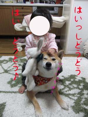2010_12_09_09のコピー
