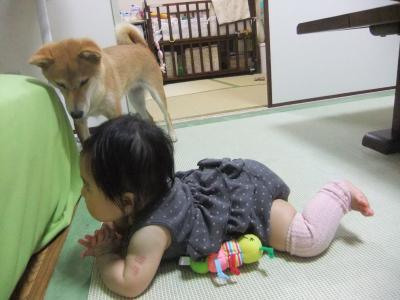 2010_06_21_06.jpg