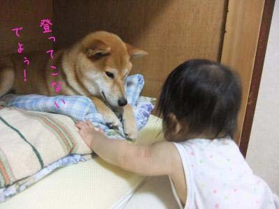 2010_08_10_08.jpg