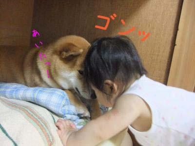 2010_08_10_09.jpg